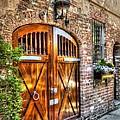 The Wooden Doorway by Michael Garyet