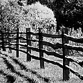 The Wooden Fence by Mike Nellums