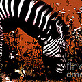 The Zebra by Jared Theberge