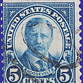 Theodore Roosevelt Postage Stamp by James Hill