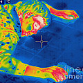 Thermogram Crime Scene by Ted Kinsman