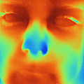 Thermogram Of A Boys Face by Ted Kinsman