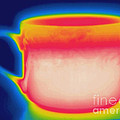 Thermogram Of A Hot Coffee Cup by Ted Kinsman