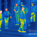Thermogram Of Kids Hanging by Ted Kinsman