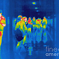 Thermogram Of Students In A Hallway by Ted Kinsman