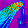 Thermogram Of Water Pouring From A Shower Head by Dr. Arthur Tucker
