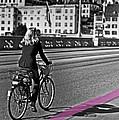 Think Pink by Claudia Moeckel