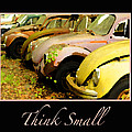Think Small by Nancy Greenland