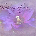 Thinking Of You Greeting Card - Rose Of Sharon by Mother Nature
