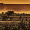 This Is Namibia No. 12 - Walking The Desert by Paul W Sharpe Aka Wizard of Wonders