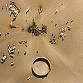 This Saharan Well Attracts Livestock by Michael Fay