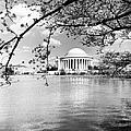 Thomas Jefferson Memorial by Granger