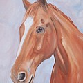Thoroughbred by George Pedro