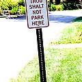 Thou Shalt Not Park Here by Seth Weaver