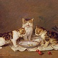 Three Cats - Red Cherries And Bees by Louis Eugene Lambert