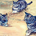 Three Cats In Dry Grass by Robert Harvey