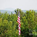 Three Flags And Kennesaw Mountain by Renee Trenholm