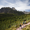 Three Hikers Walk On A Trail by Michael Hanson