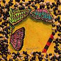 Three Mariposas by Michael Pedziwiatr