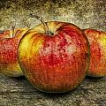 Three Red Apples by Randall Nyhof