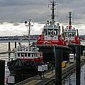 Three Red Tugs by Randy Harris