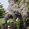 Three Train Race by Tom Steele
