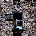Three Windows by Bill Cannon