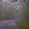 Through The Forest Dark And Deep 0 by Douglas Barnett