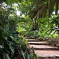 Through The Garden by Bob and Nancy Kendrick