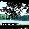 Through The Pavilion At Trap Pond State Park Delaware  by Pamela Hyde Wilson