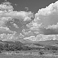 Thunderstorm Clouds Boiling Over The Colorado Rocky Mountains Bw by James BO Insogna