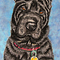 Tia Shar Pei Dog Painting by Michelle Wrighton