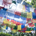 Tibetan Buddhist Prayer Flags by Glen Allison
