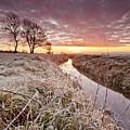 Tickenham Dawn by Mark Crocker - images through a lens