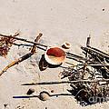 Tidal Treasures by Al Powell Photography USA