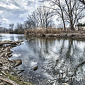 Tifft Nature Preserve by Phil Pantano