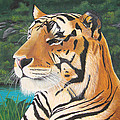 Tiger Falls by Jeffrey Oldham
