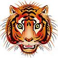 Tiger by Michal Boubin