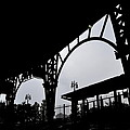 Tiger Stadium Silhouette by Michelle Calkins