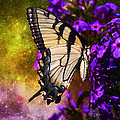 Tiger Swallowtail Feeding In Outer Space by J Larry Walker