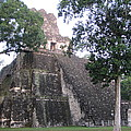 Tikal And Its Pyramids by Stewart Haile