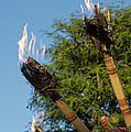 Tiki Torch by Heidi Smith