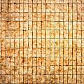 Tiled Wall by Tom Gowanlock