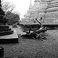 Timber In The Temple. by Pitakpong Chansri