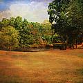 Timbers Pond by Jai Johnson