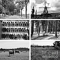 Timeless Brabant Collage - Black And White by Carol Groenen