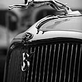 Timmis-ford V8 Greyhound Hood Ornament by Gordon Dean II