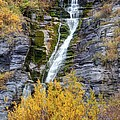 Timpanogos Waterfall In The Fall - Utah by Gary Whitton