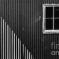 Tin Light And Window by Ronnie Glover