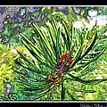 Tiny New Pine Cones by Debbie Portwood